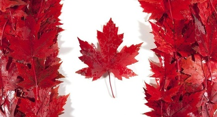 WHY IS CANADA CALLED THE 'LAND OF MAPLE LEAF'?